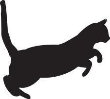 cat-silhouette-vector-19972